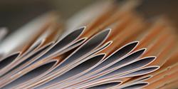 Декларирование и сертификация продукции