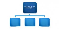 Структура ТН ВЭД ТС